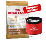 Royal Canin French Bulldog Adult - Hondenvoer - 9 kg
