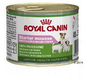 Royal Canin 12 x 195 g Starter Mousse Mother Babydog