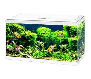Ciano Aquarium Aqua 60 LED CF80 Wit