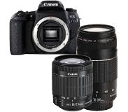 Canon EOS 77D + 18-55mm iS STM + 75-300mm III