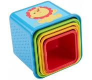Fisher-Price Stapel en Leer Blokken